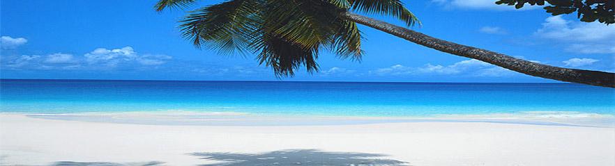 Clima En Cancun