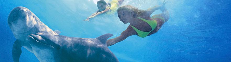 Actividades Y Atracciones En Cancun A Donde Ir En Cancun